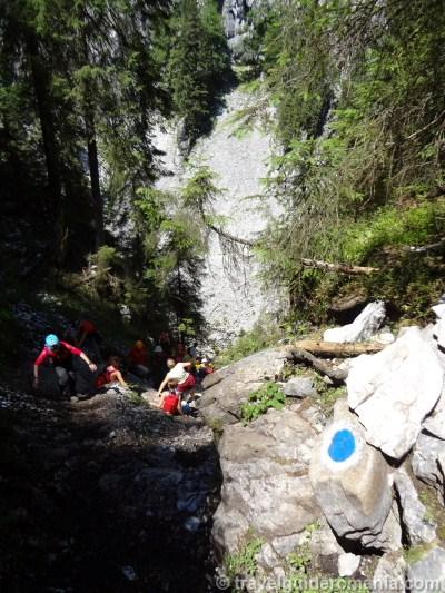Track route to Cetatile Ponorului cave