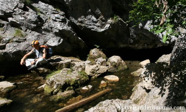 Spring in Poiana Ponor - Padis turistic area