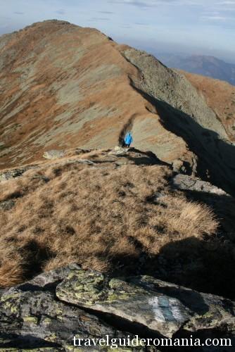 view of Pietrosul Peak from Rebra peak