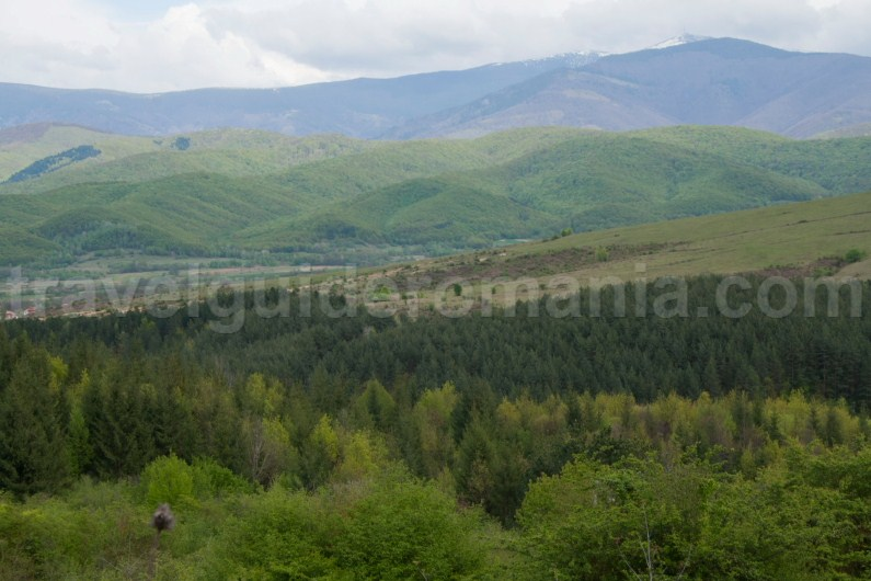 Codru Moma mountains - subdivision of Apuseni mountains
