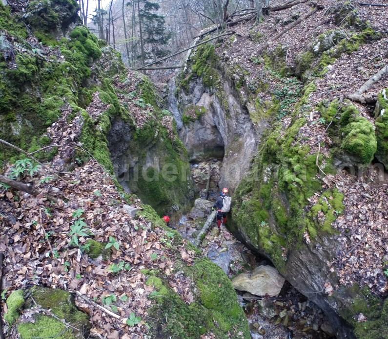 Oselu gorges - Apuseni Natural Park