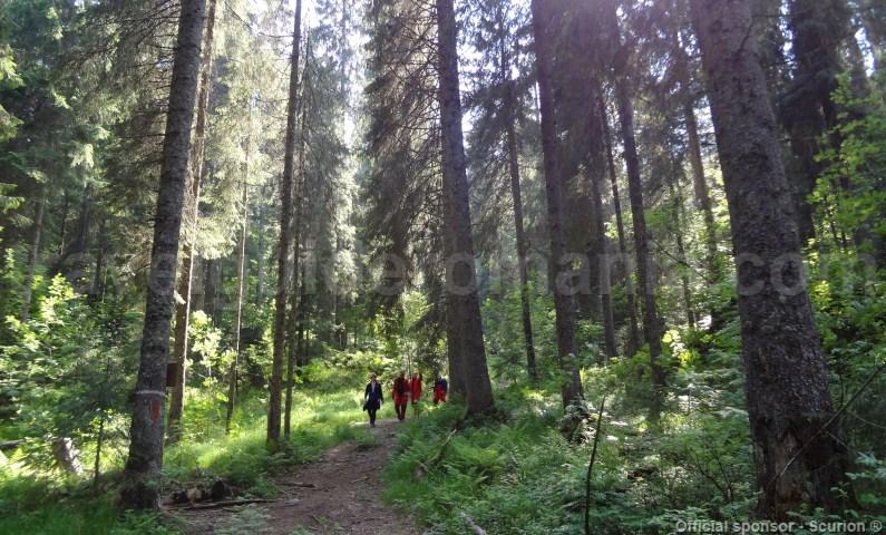 Trail to Bortig Pit cave - Padis -Apuseni mountains