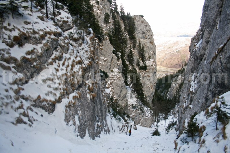 Crapaturii Valley - Piatra Craiului National Park