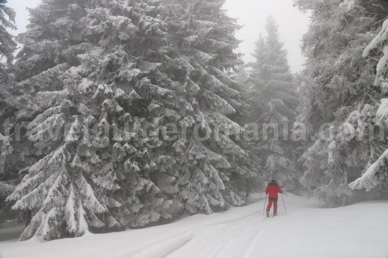 Ski touring near Stana de Vale ski resort - Apuseni
