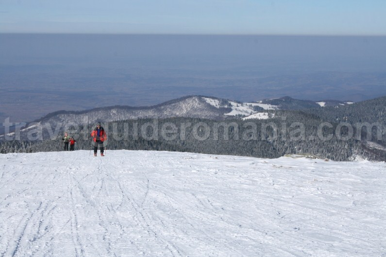Winter trek from Stana de Vale resort to Poieni peak