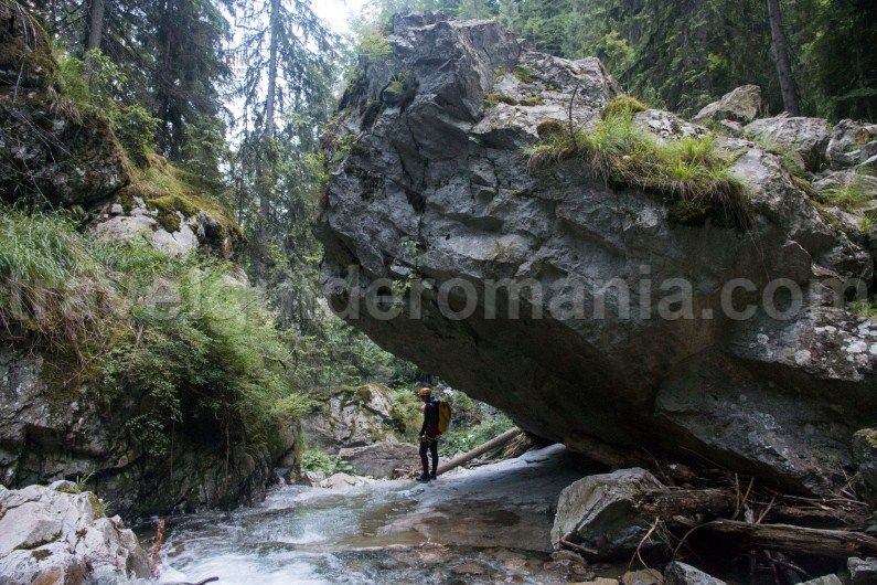 Marii Canyon in Retezat Mountains - Travel to Romania
