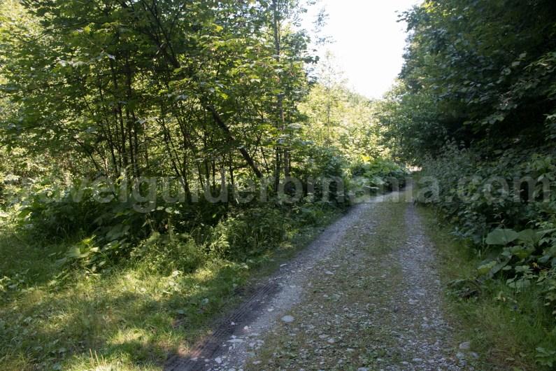 Road leading to Marii Valley - Retezat Mountains