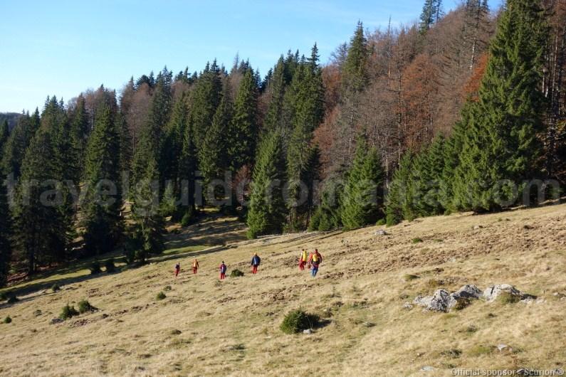 Acces to V5 cave - Varasoaia area - Bihor Mountains
