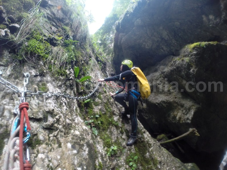 Things to Do in Apuseni Mountains - Canyoning in Galbenei Gorges