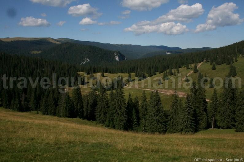 Varasoaia Glade - Padis - Apuseni Mountains