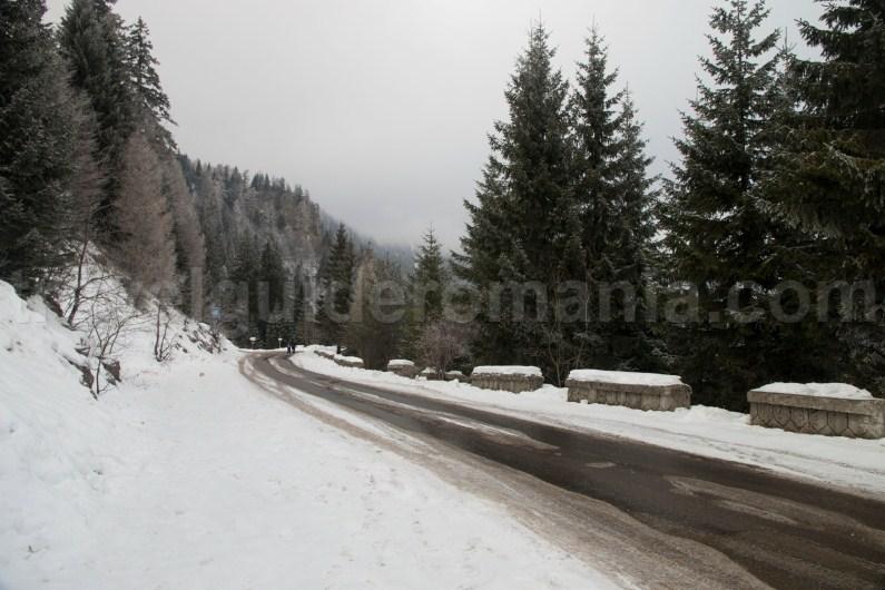 Access to Sinaia Resort - Prahova Valley - Bucegi Mountains