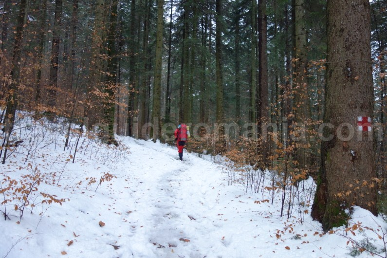 Hiking in Romania - Trails in Ceahlau Mountain