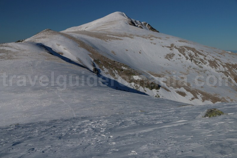 Highest peak in Godeanu Mountains - Gugu peak
