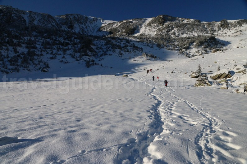 Winter guided trips in Romania - Godeanu mountains