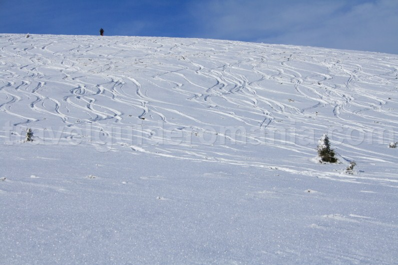 Best ski touring places in Apuseni mountains - Vladeasa area