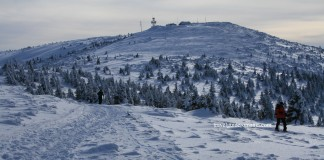 Vladeasa peak - Apuseni mountains