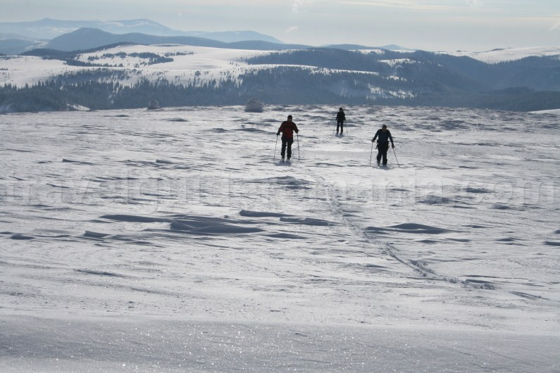 Ski touring in Apuseni Mountains