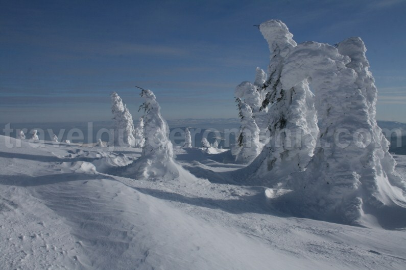 Visit Transilvania in wintertime - Vladeasa Mountains