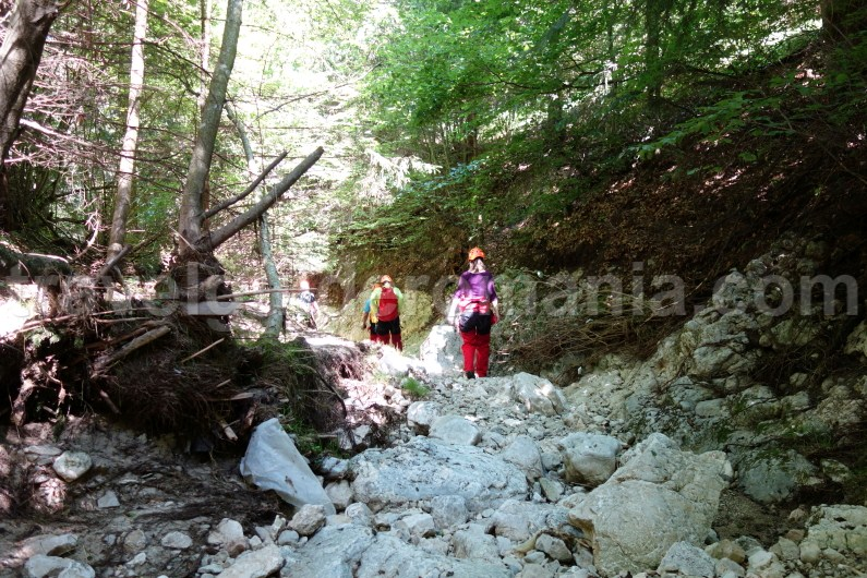 Romania activity holidays - canyoning at Oratii valley