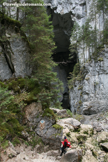 track to Cetatile Ponorului Cave - Apuseni Mountains