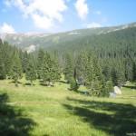 camping site in Poiana Pelegii – Retezat mountains