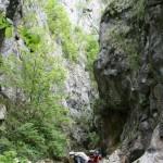 Domoglet National Park