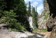 Travelling to Romania - Apuseni mountains