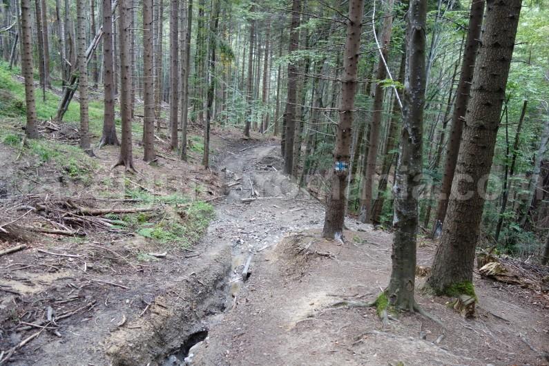 Trails in Bucegi mountains