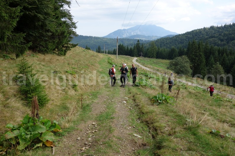 trails in Bucegi mountains