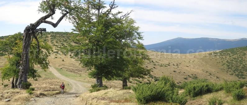 Mountain biking guided trips in Romania