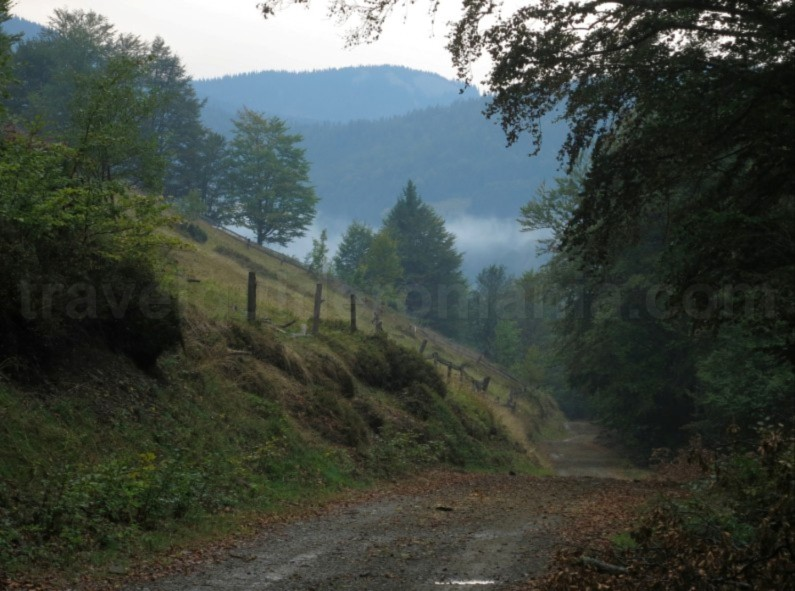 Travel tips for mountain biking