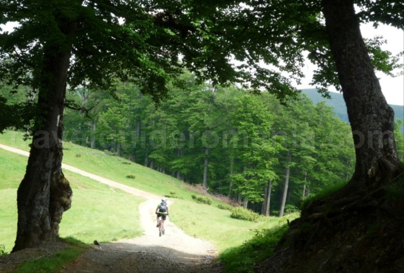 Mountain biking vacation packages in Romania