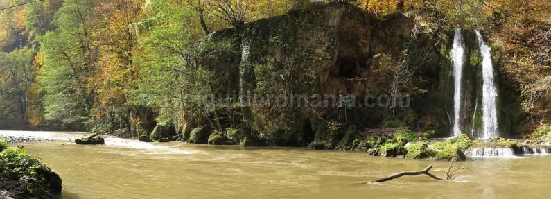 Padurea Craiului Apuseni