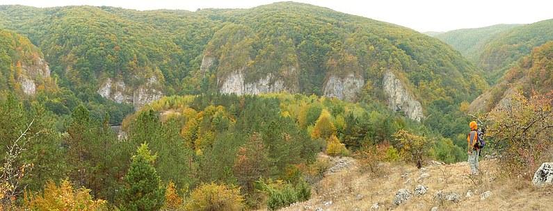 Crisul Repede defile balnaca suncuius Padurea Craiului