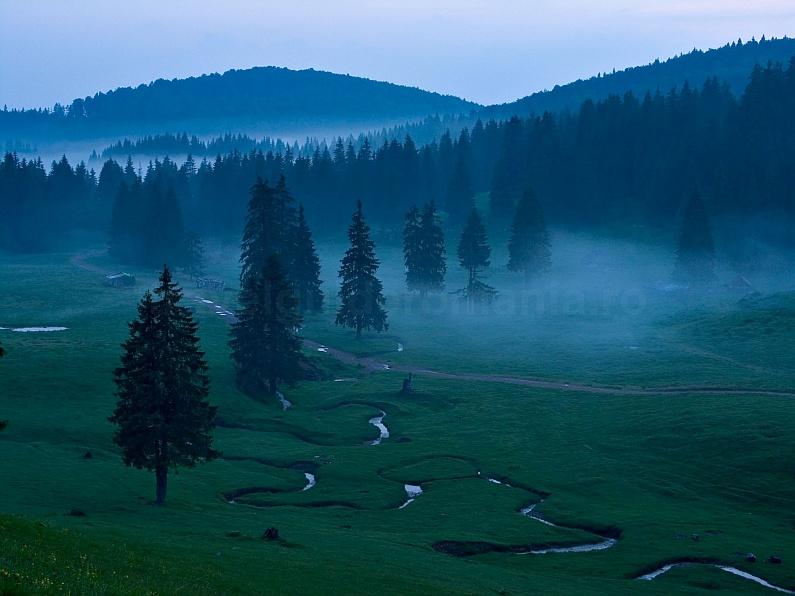 Padis mist Apuseni mountains adventure
