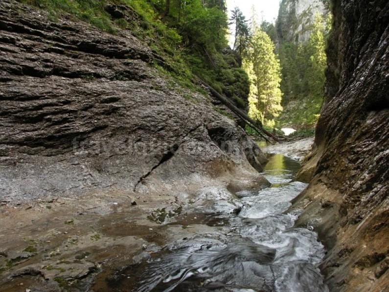 Somesului Cald Gorges Padis Apuseni wild adventure