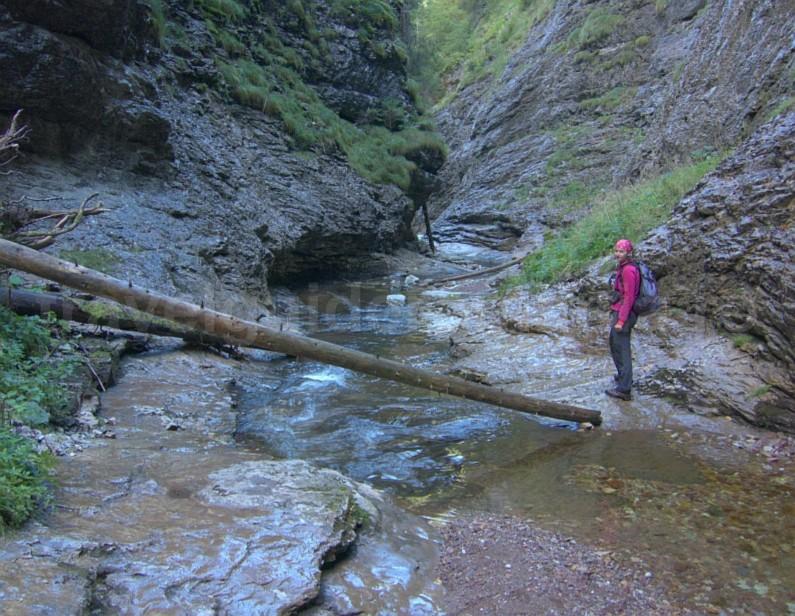 Somesului Cald gorges Padis Apuseni adventure