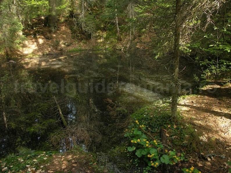 black lake Padis Apuseni adventure