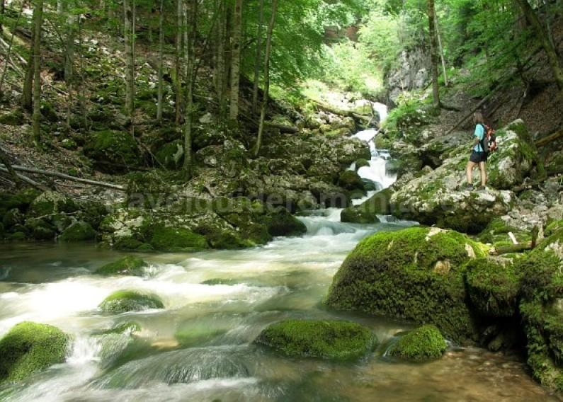 galbenei gorges Padis Apuseni wild adventure