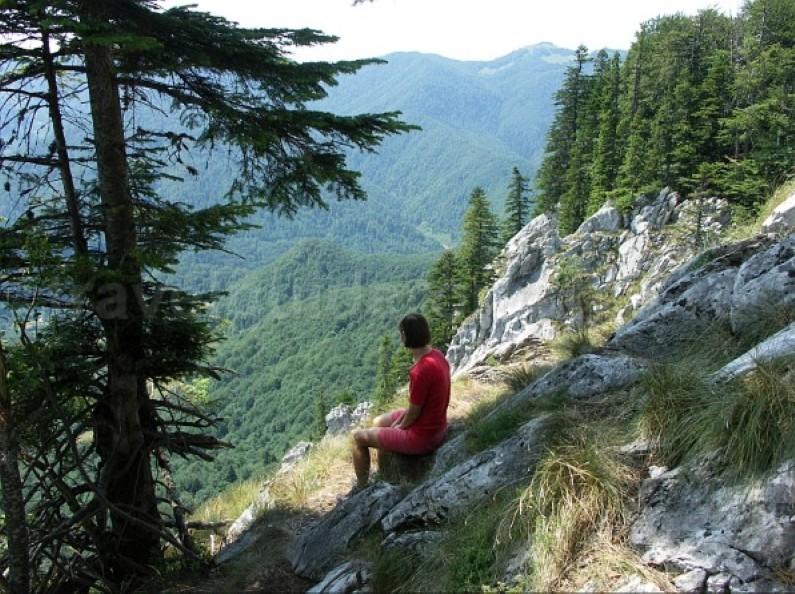 galbenei peak Padis Apuseni natural park