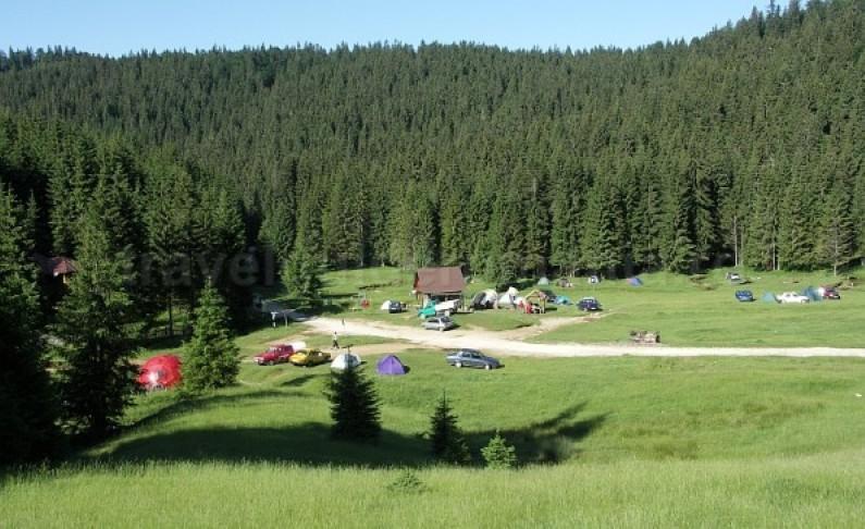 glavoi glade Padis Apuseni natural park romania