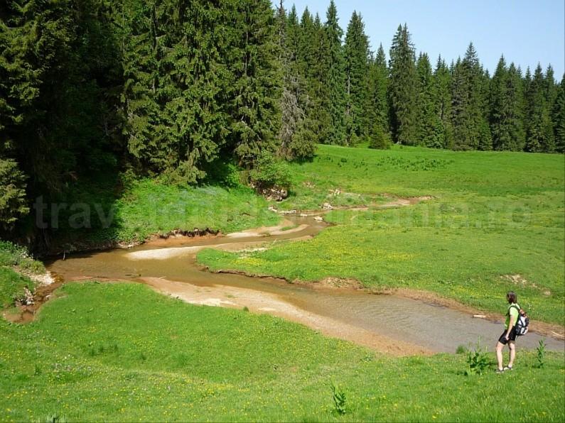 ponor glade Padis Apuseni natural park
