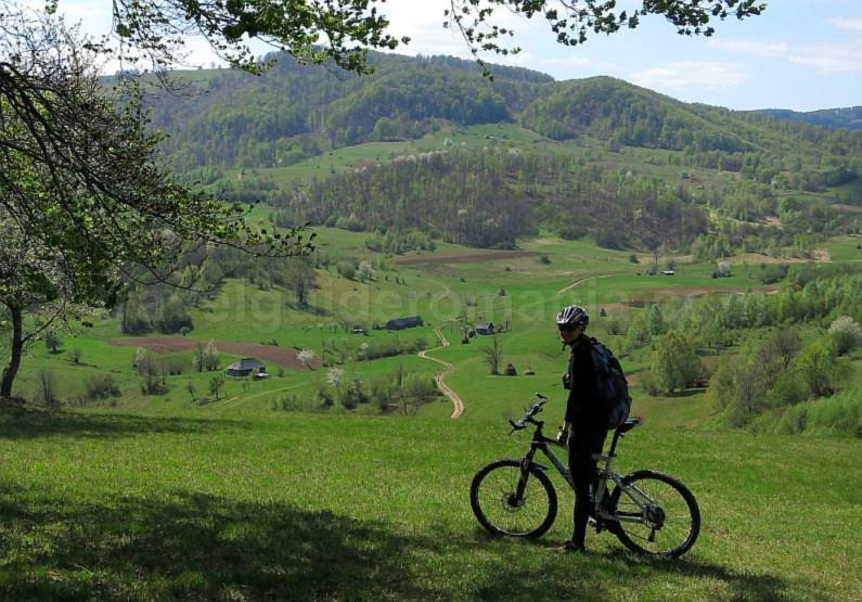biking Ponoara mtb Padurea Craiului Apuseni