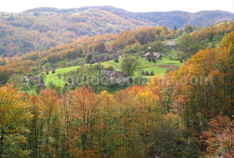 bratcutei valley mtb Padurea Craiului Apuseni