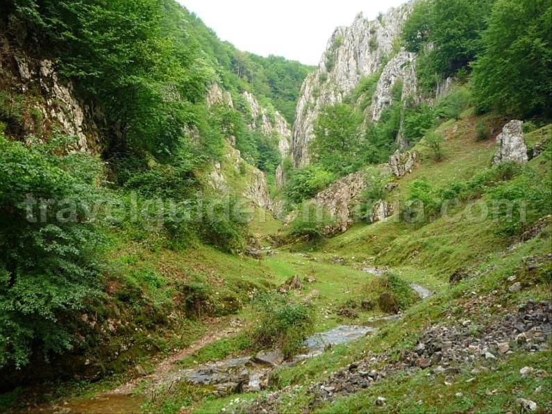 hiking cutilor gorges rosia Padurea Craiului Apuseni
