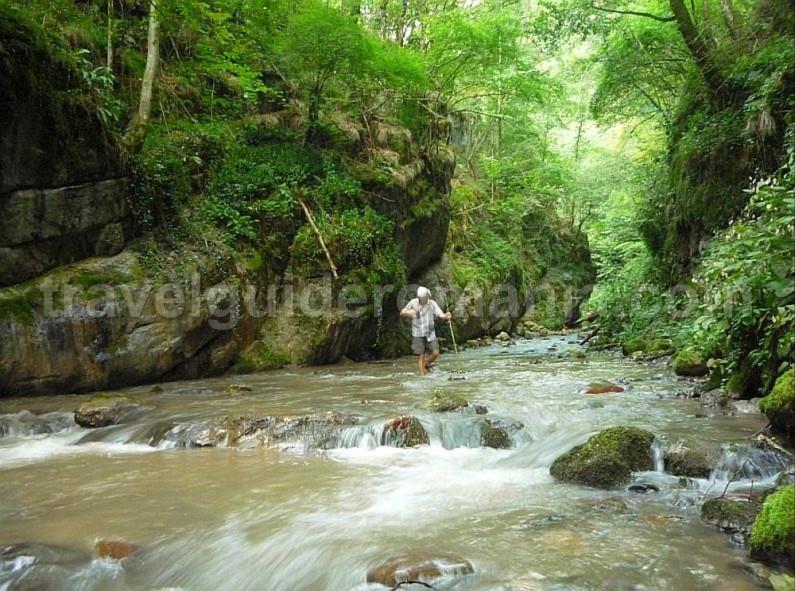hiking lazuri gorges rosia Padurea Craiului Apuseni