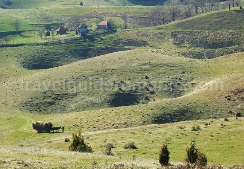 sinkholes farcu Padurea Craiului Apuseni