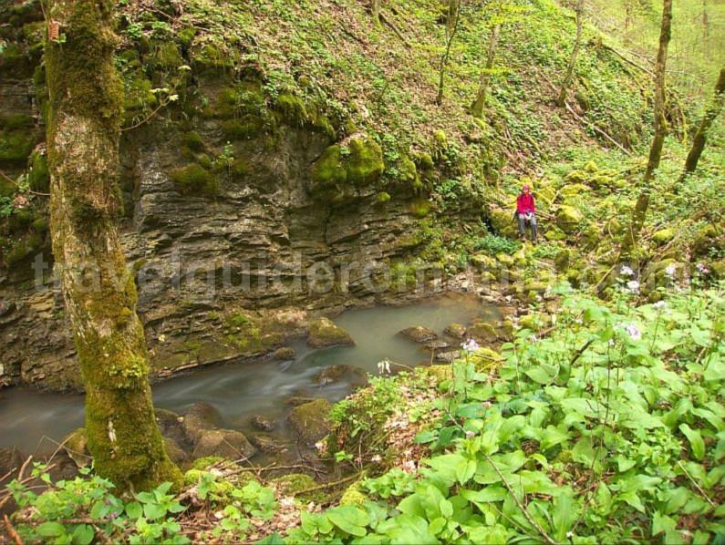 toplita de rosia karstic spring hiking Padurea Craiului Apuseni
