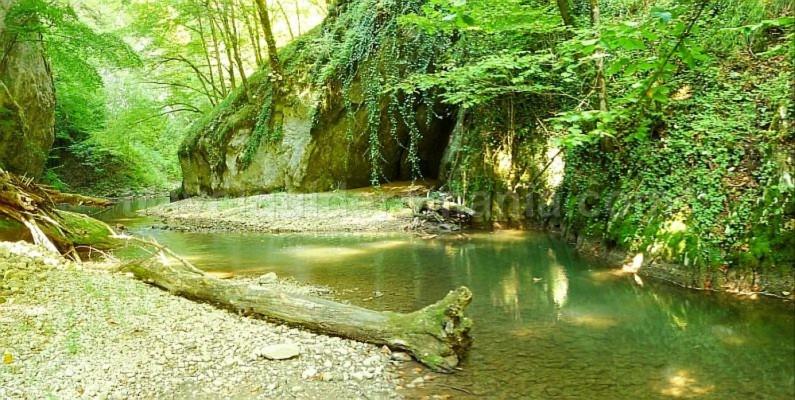 videi gorges Padurea Craiului Apuseni