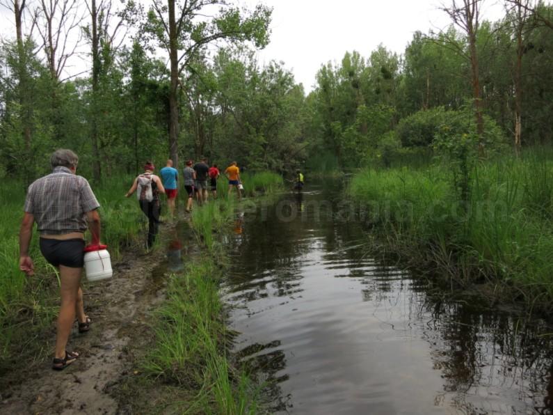 Danube Delta Nature Reserve caraorman forest